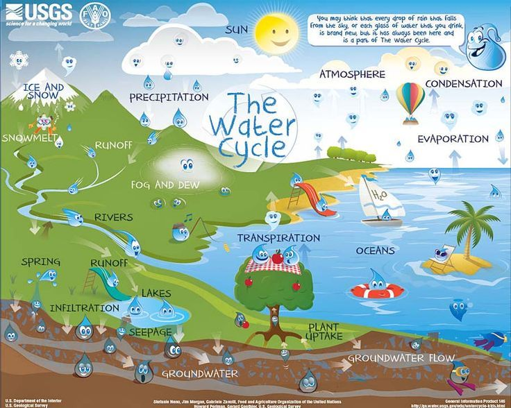 We love this interactive water cycle chart from usgs you can select the right level also best weather and images on pinterest rh