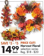 Harvest Floral from Big Lots $14.99 (SAVE $3 - $5)