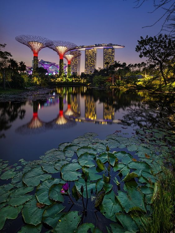 9f7cce6c6571f1a7c35e9cb7a390b6c0 - Gardens By The Bay Singapore On Budget