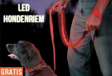 LED hondenriem in 7 kleuren t.w.v. €19,95 nu GRATIS! #productenengadgets