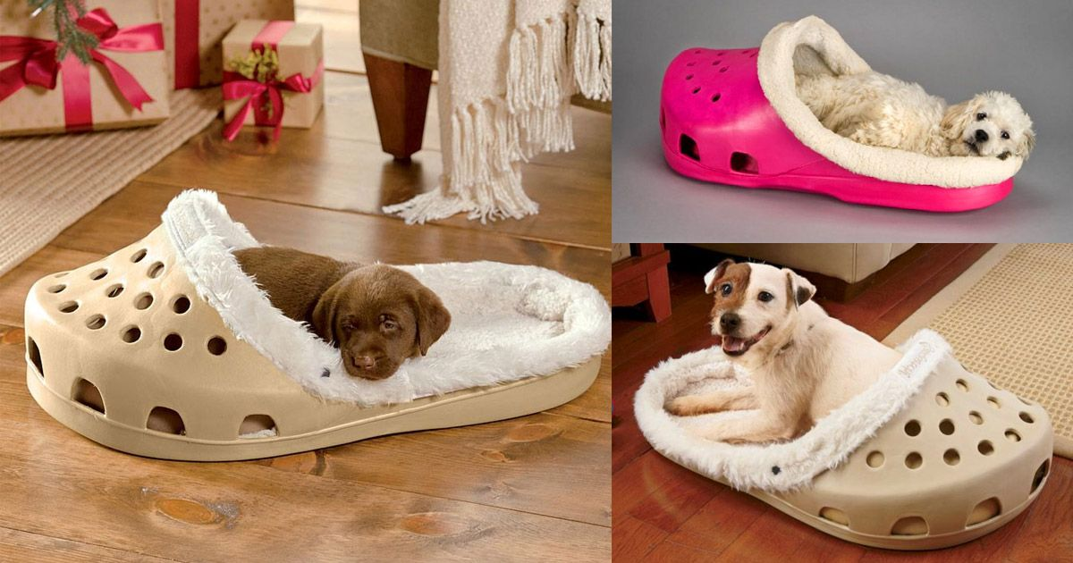 There's A Shoe Shaped Dog Bed That Exists For Dogs That