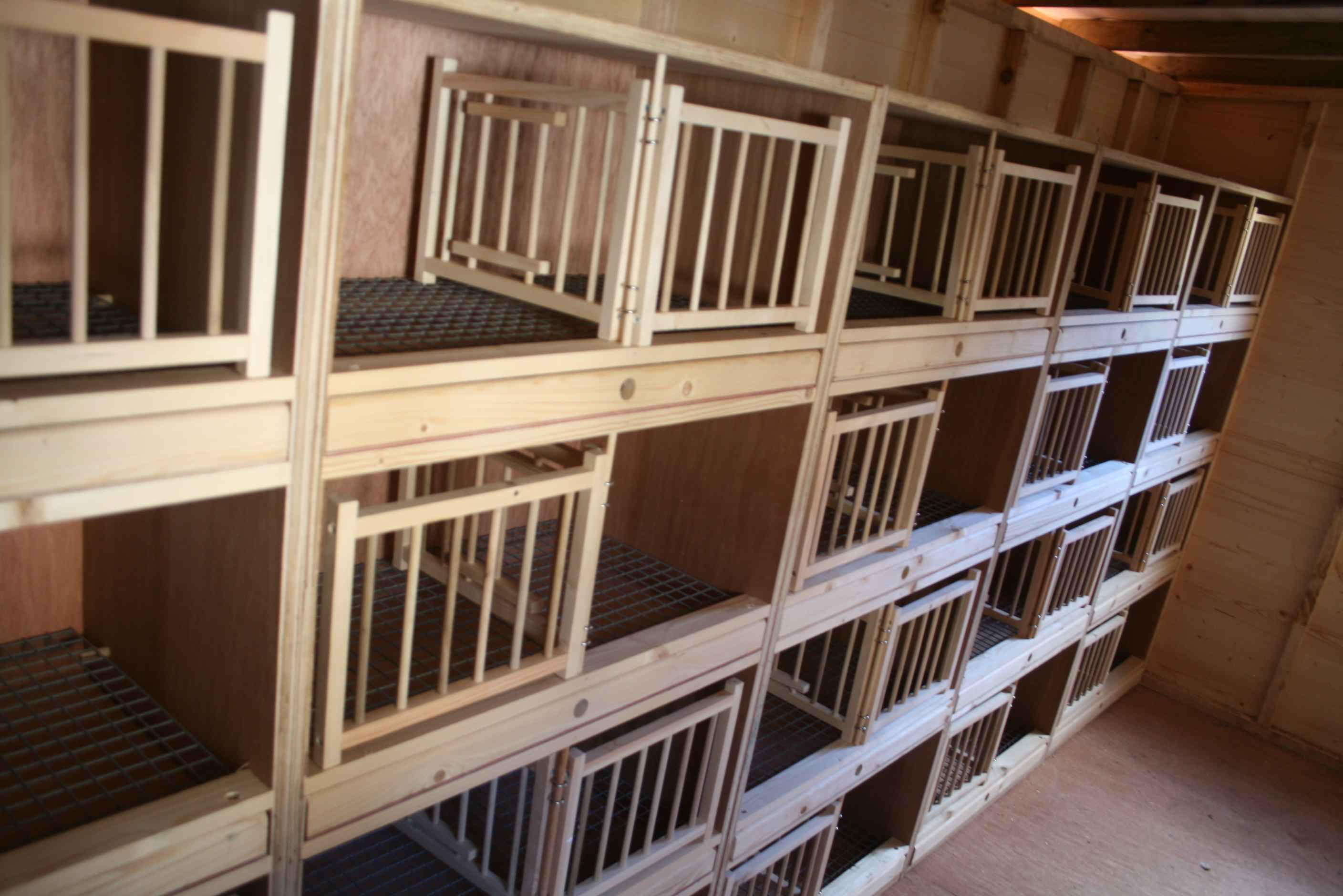 Pigeon house plans and photos - Pigeon Cage Design