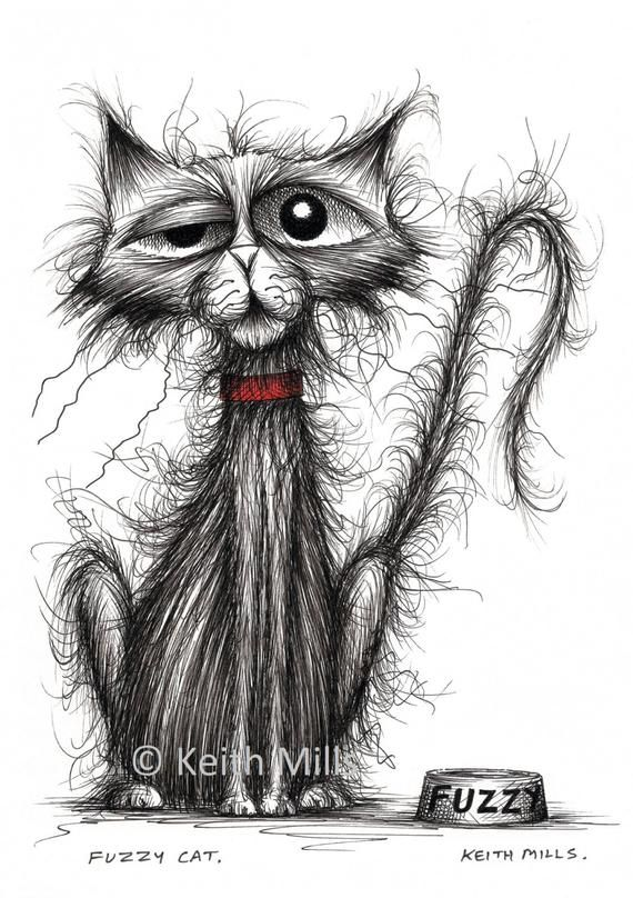 Fuzzy Katze Druck herunterladen Grumpy kleine Haustier Kätzchen Kätzchen Pussycat mit dünnen tatty Schwanz miserable Gesicht und schroffen Fell Tier Bild Bild