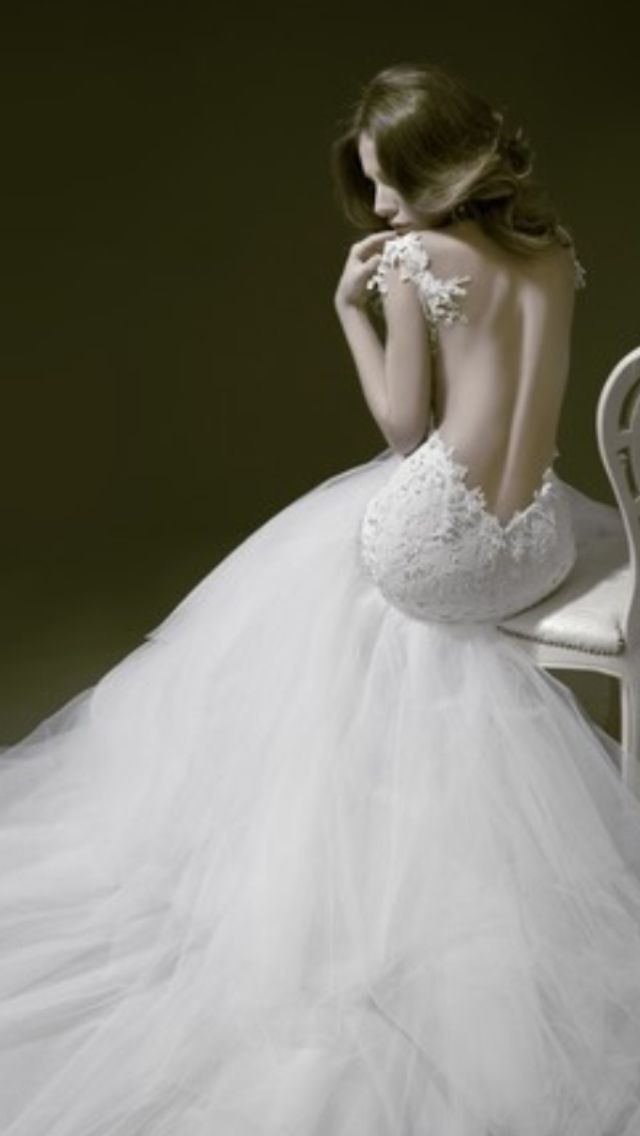 Pnina Tornai Lace Gown With A Tool Bottom The Endless Closet