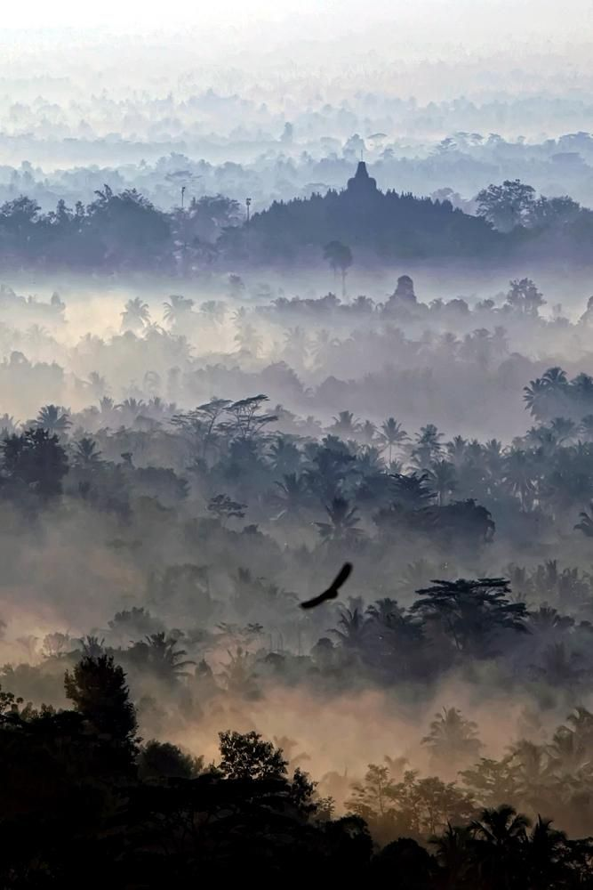 Asian rich list sunrise