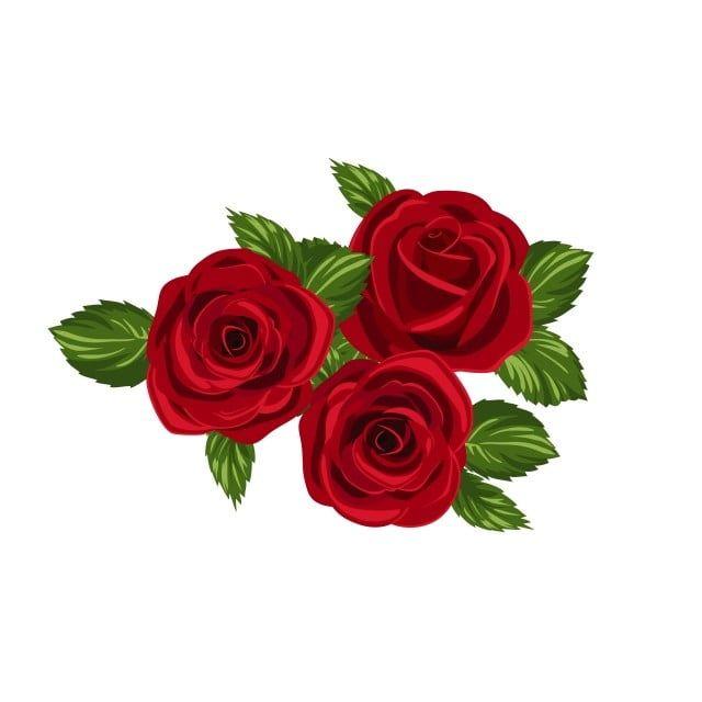 Gambar Merah Bunga 3d Alam Semula Jadi Musim Panas Bunga Png Dan Vektor Untuk Muat Turun Percuma Watercolor Rose White Flower Background Red Flowers