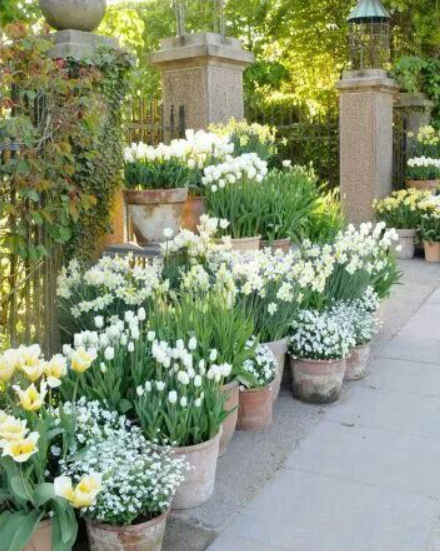 Pingl par cathie herrmann sur jardin cr er son jardin jardins et pot jardin - Creer son jardin ...