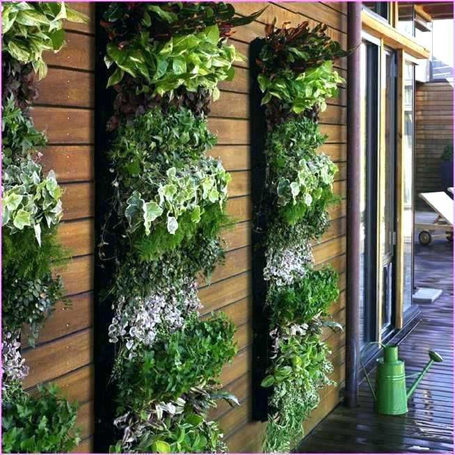 Image Result For Diy Outdoor Living Wall
