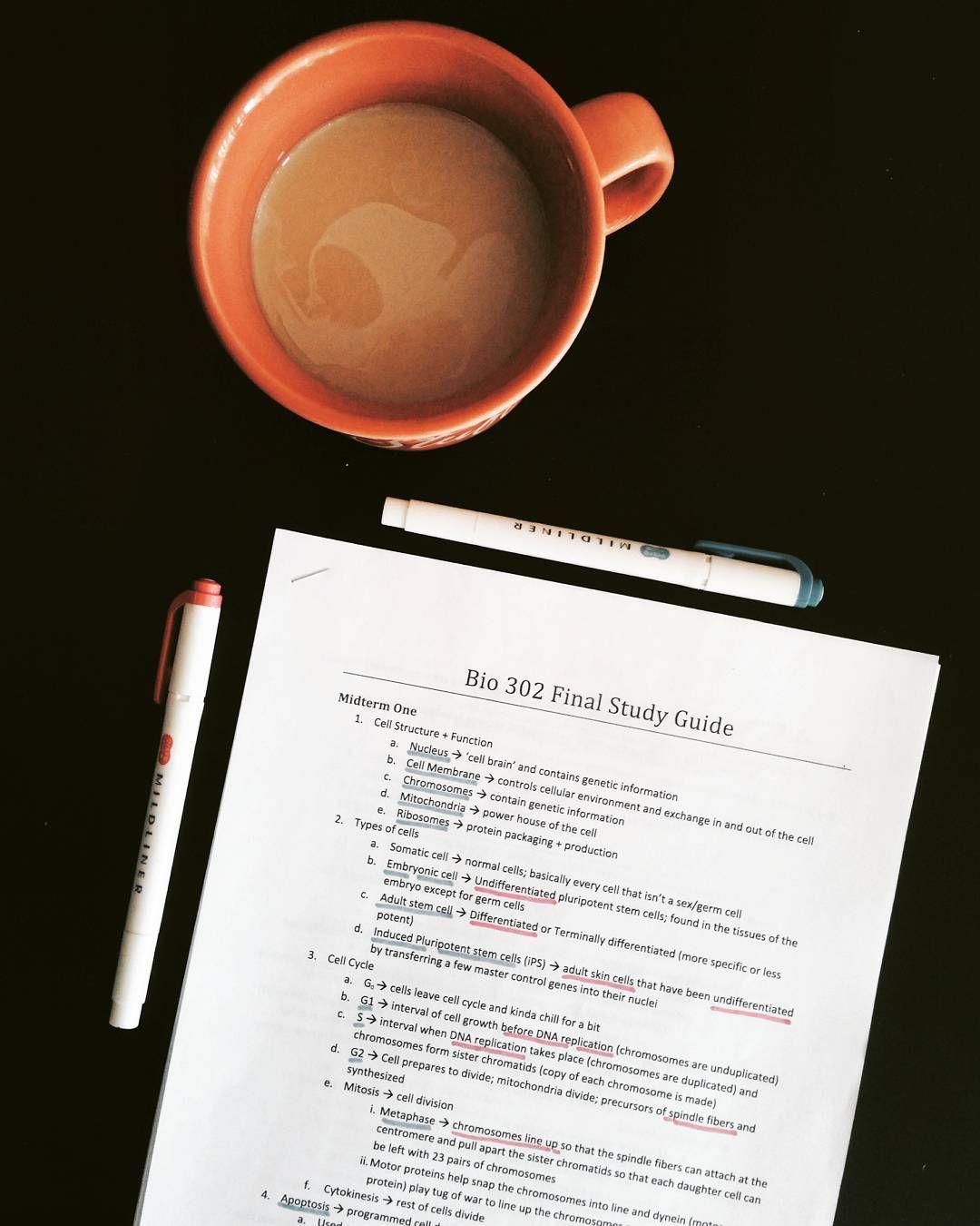 ✨Pinterest✨: @baddiebecky21| Bex ♎️ | | STUDY | Study