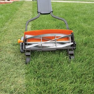 Fiskars StaySharp Max Reel Lawn Mower Review is part of lawn Mower People - 1HEB1ox