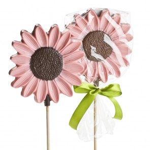 Chocolate Daisy Sucker - Pink