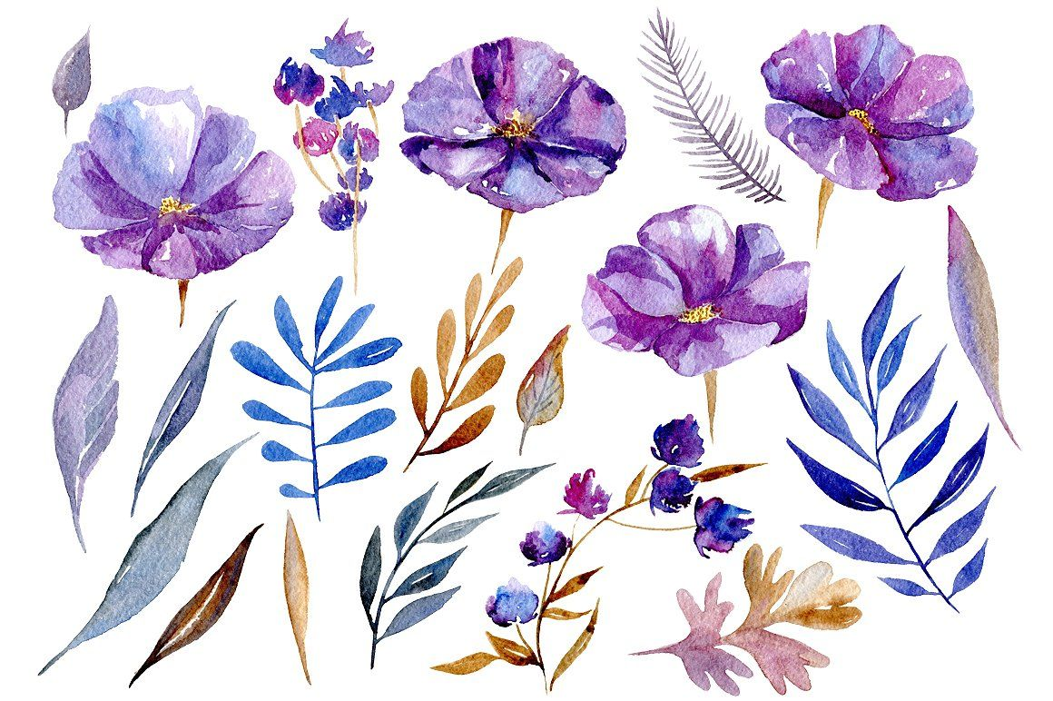 Watercolor Violet Flowers 32 Png With Images Violet Flower