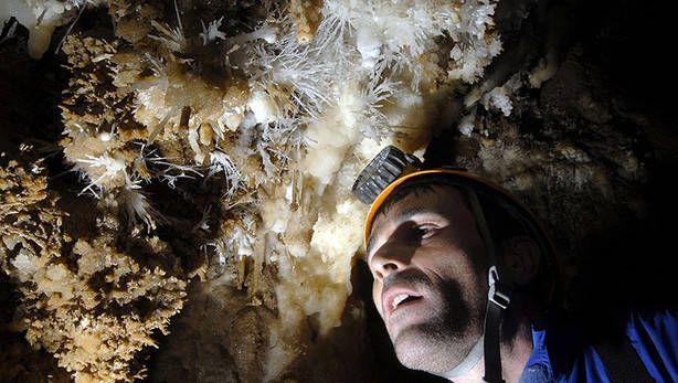 Eneko Agirre, en la cueva de Lantz, observa excéntricas, formaciones que el agua, gota a gota, ha realizado en la roca.