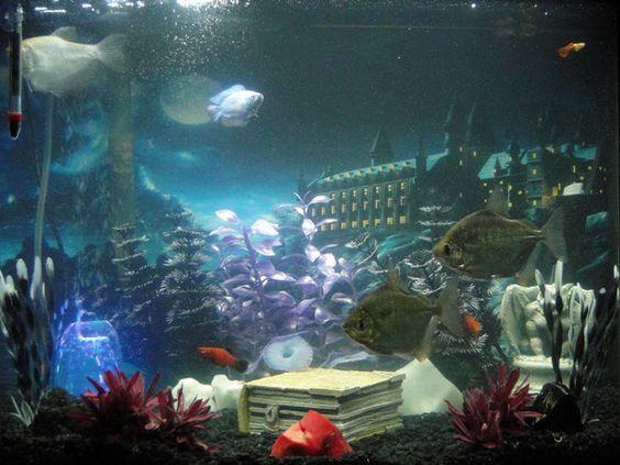 Harry Potter Themed Fish Tank Google Search Fish Tank Aquarium Fish Betta Fish