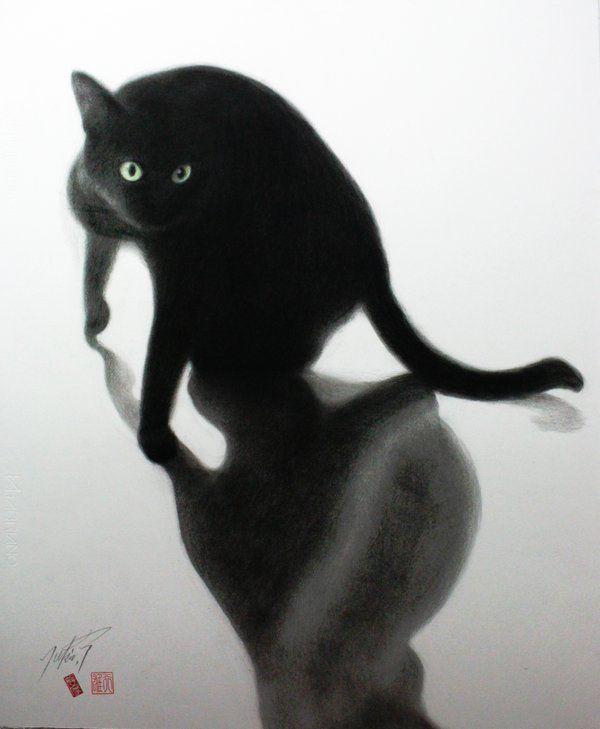 Maggie E Takahashi Maggie Chat Orange Tabby Cats Black Cat Art Cat Portraits