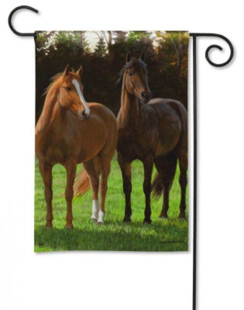 Whatu0027s Up? Horse Garden Flag