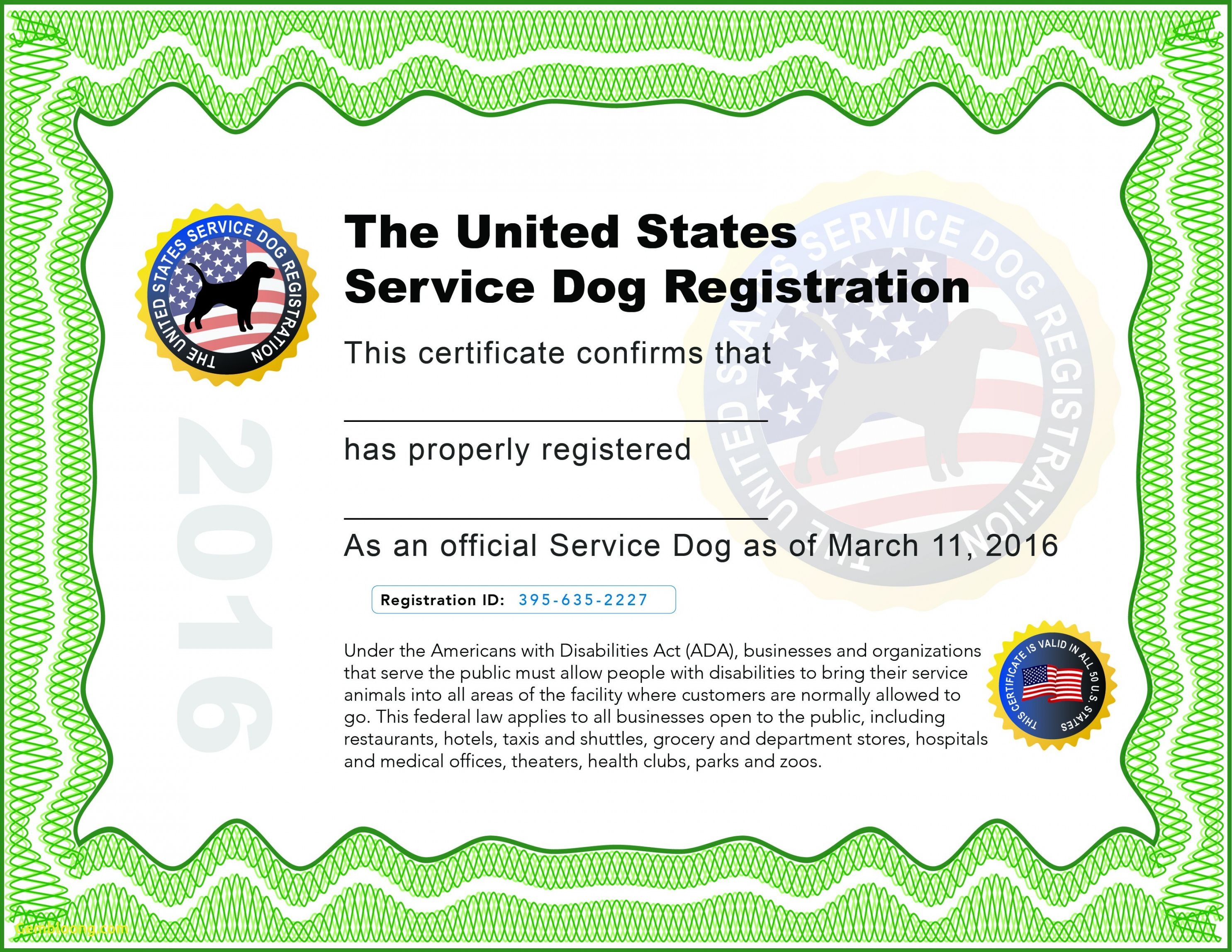 Service Dog Training Certificate Template Training Certificate