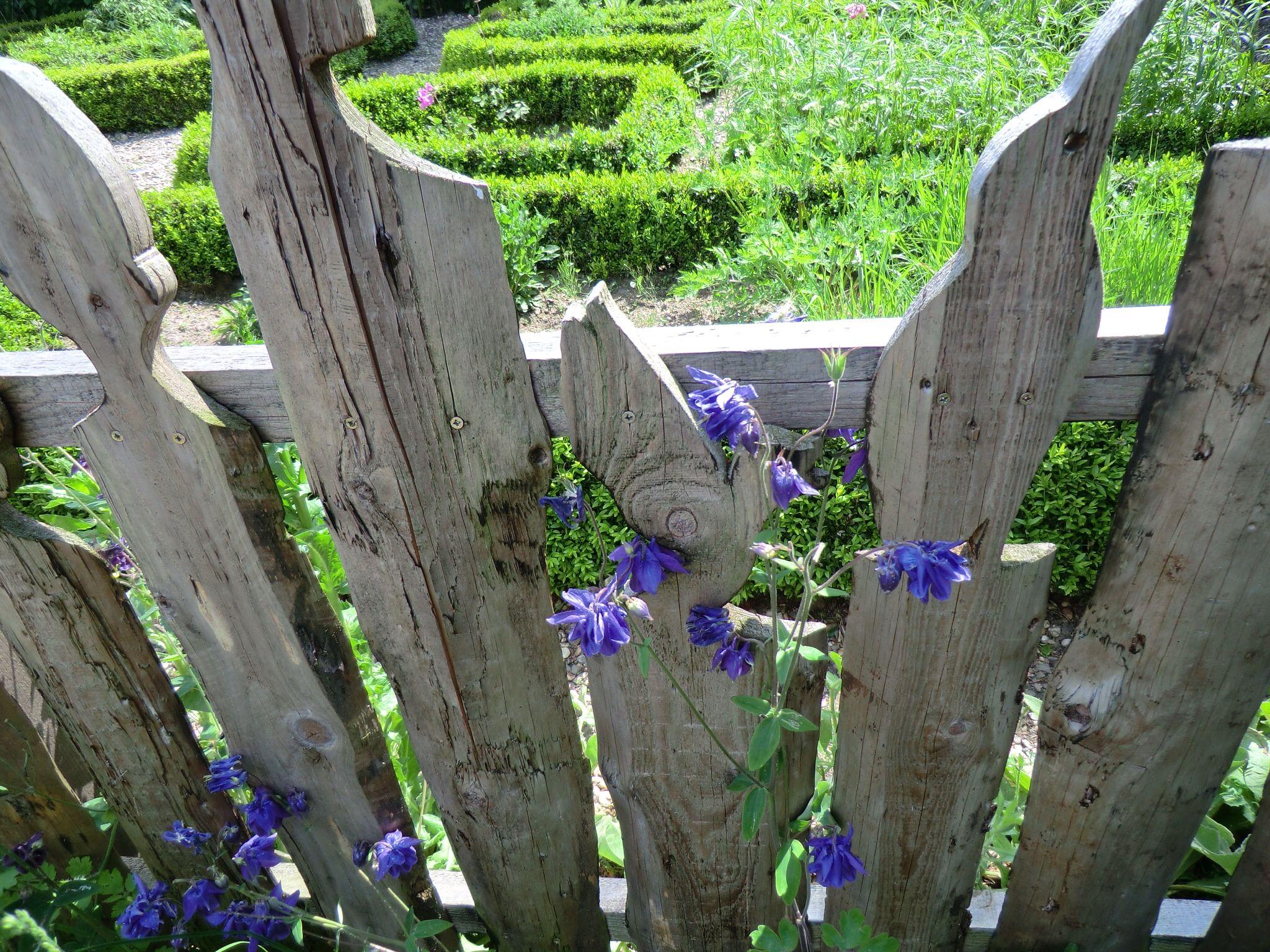 Schöner Gartenzaun Holzideen Pinterest