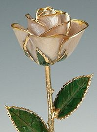 We provides the beautiful Gold, Silver and Platinum Dipped Rose. The Custom Rose is your online source for unique, romantic gift ideas for Valentine's, anniversary or any other special occasions.   http://customrose.com/index.php/cPath/21