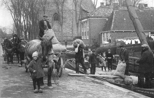 fotoalbersladen_van_aardappelen_1920.jpg 540×344 pixels