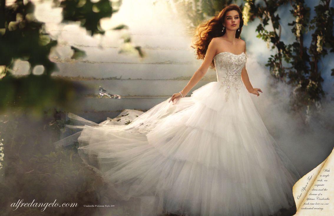 Cinderella inspired wedding dress  Cinderella dress at midnight  Wedding Ideas  Pinterest