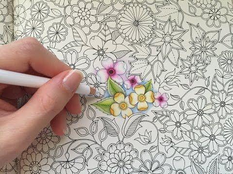 My Basic Flowers Coloring Secret Garden Coloring Book Secret Garden Colouring Coloring Books