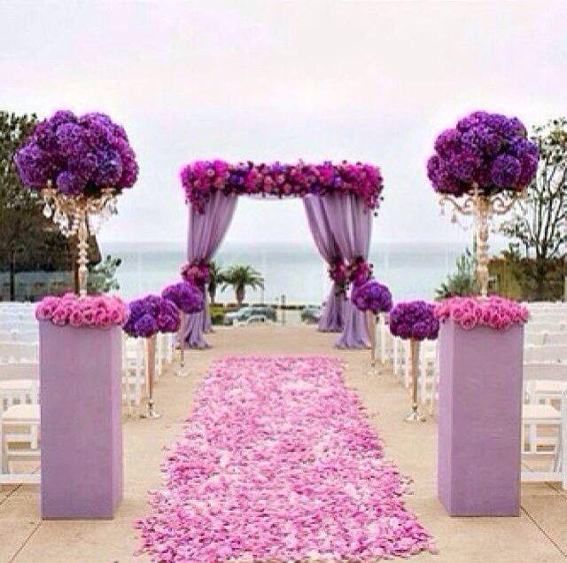 Love the Purple flowers