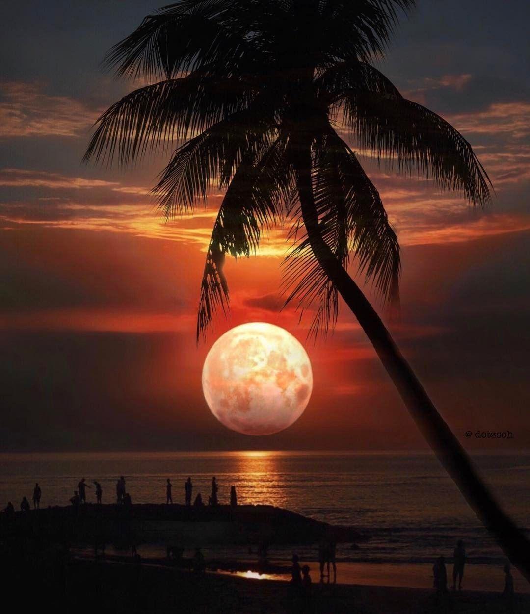 месте пляж и луна фото бабушки народ любопытный
