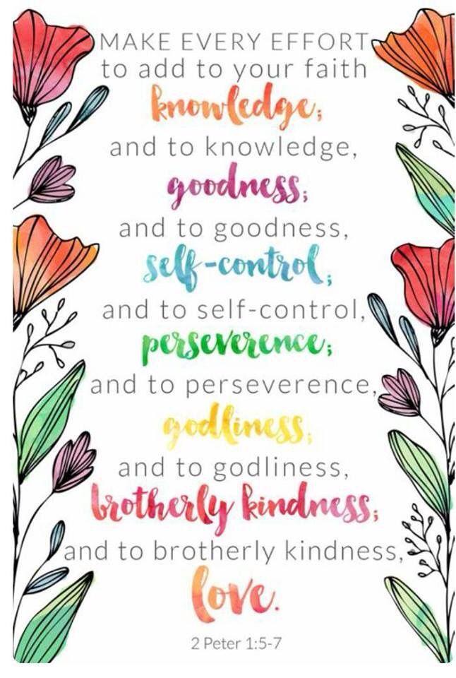2 Peter 1:5-7   Scripture quotes, Scripture verses, Bible inspiration