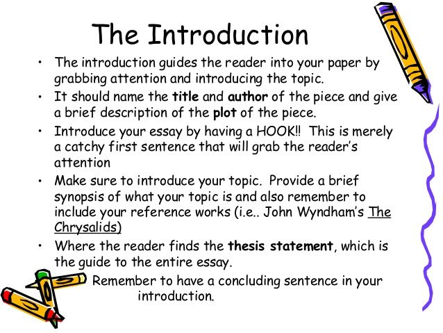 english essay introduction example - Google Search | essay ...