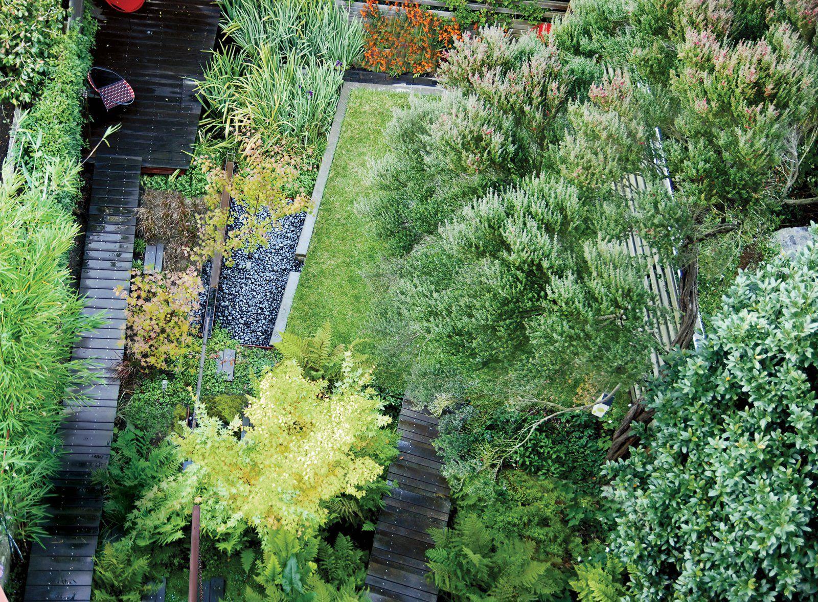 Backyard Marsh in San Francisco   Landscape design ...