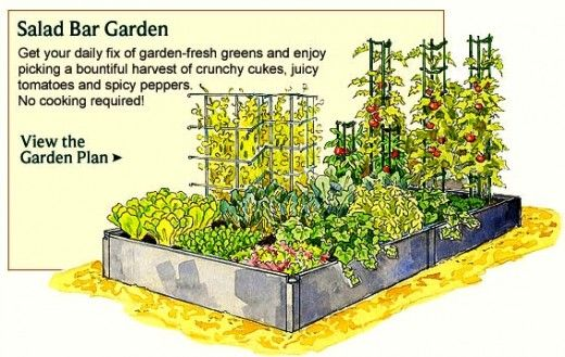Captivating Vegetable Garden Planner   Layout, Design, Plans For Small Home Gardens