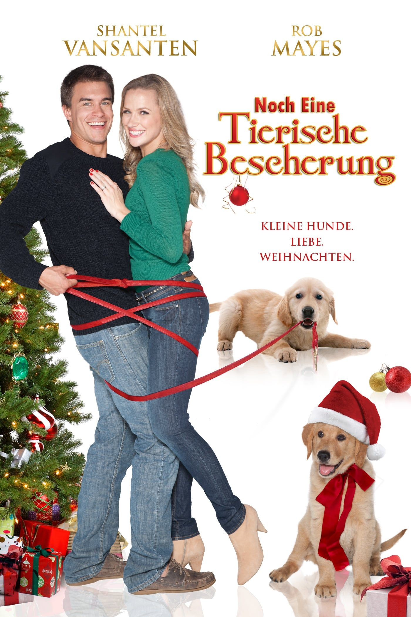 Watch A Golden Christmas 3 FULL MOVIE HD1080p Sub English