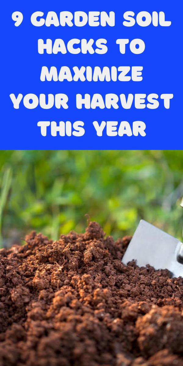 9 Garden Soil Hacks To Maximize Your Harvest This Year Gardening Sun In 2021 Garden Soil Soil Hacks Planting Herbs