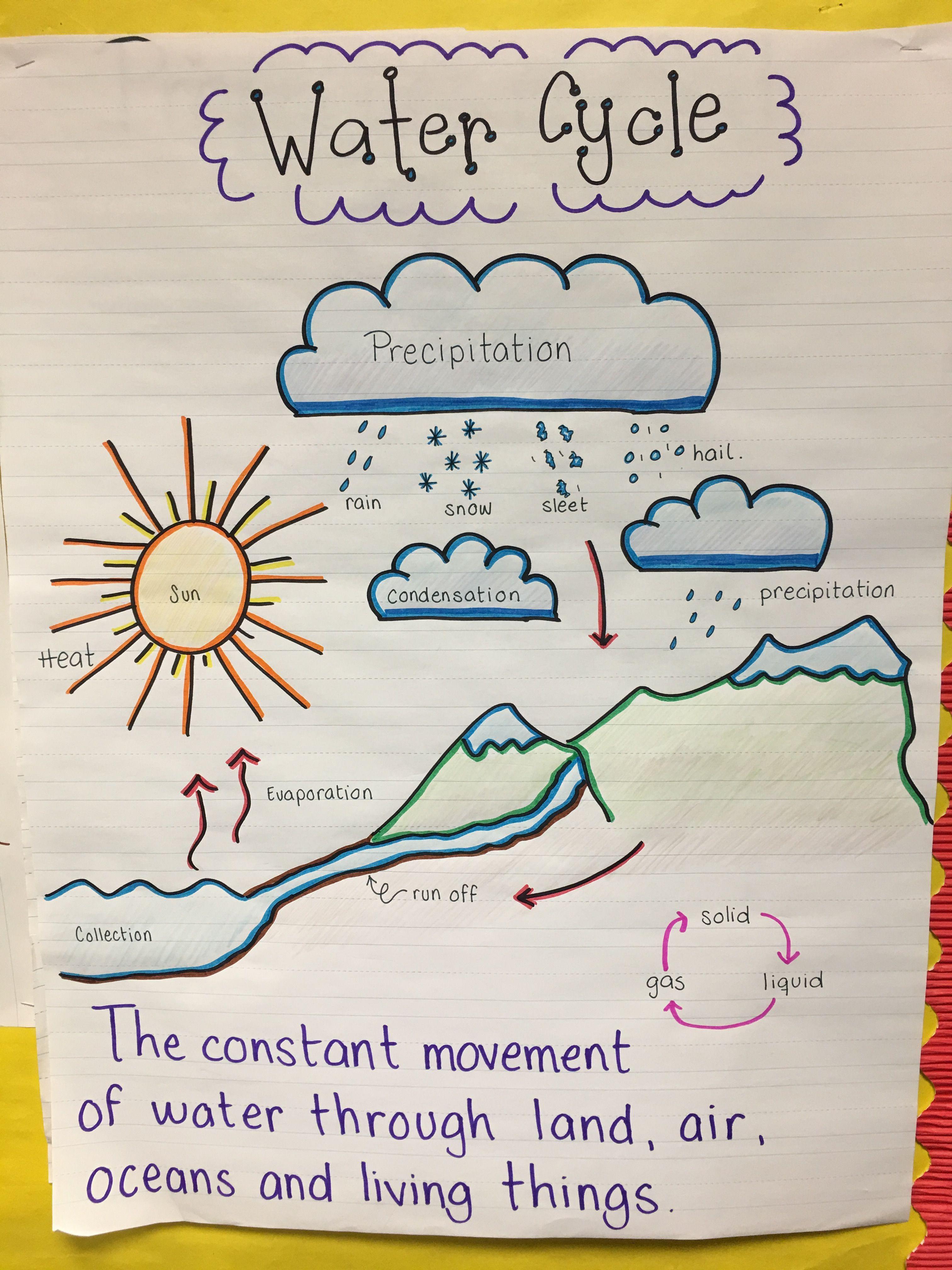 Environmental Science Water Cycle Anchor Chart Grade