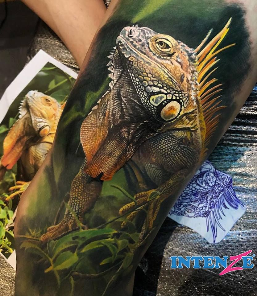 Pin by michael lingo on tattoos iguana tattoo steve