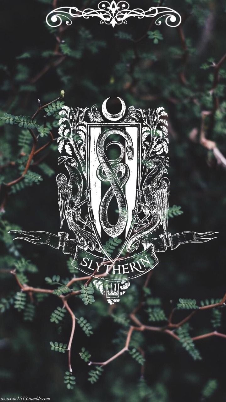 Sorry I'm in Slytherin so I had to man lol Sonserina