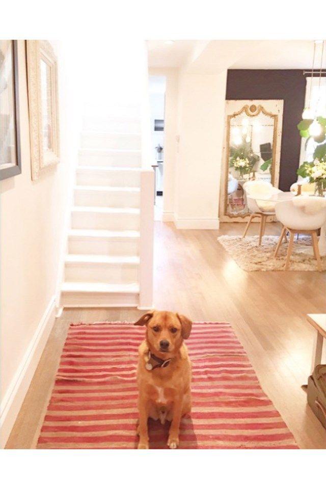 Instagram snoop of the week: Meghan Markle's Toronto home ...
