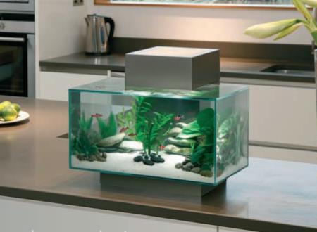 Fluval Edge Click For Details Bespoke Designer Aquariums Custom Fish Tank Accessories Aquarium Install Custom Fish Tanks Fish Tank Accessories Fish Tank