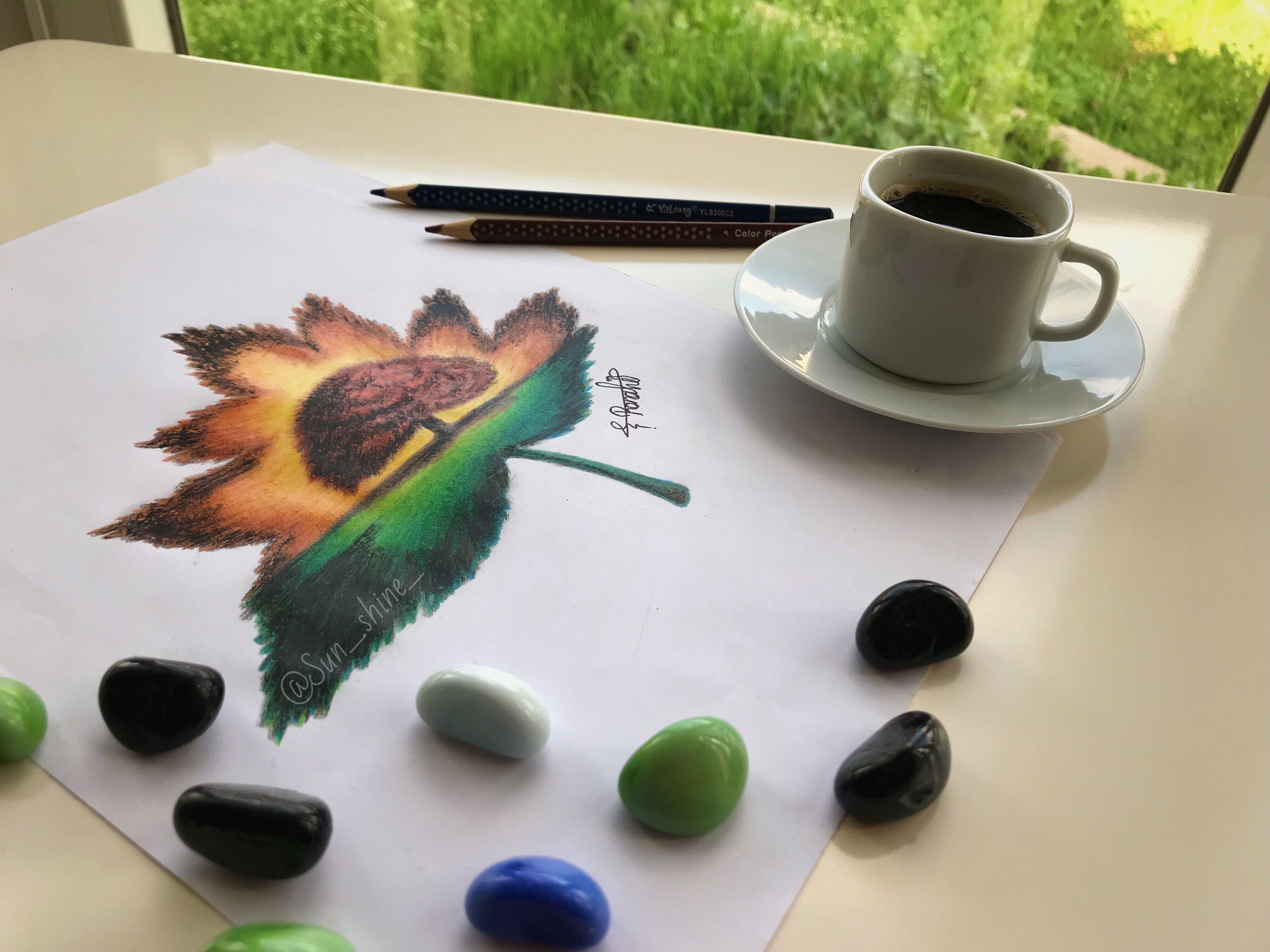 Sunshine اجعل علاقتك مع الناس كأوراق الشجر من يبقى يثمر ومن يسقط لايعود By Sunshine Mydrawing رسومات Drawin My Drawings Glassware Tableware