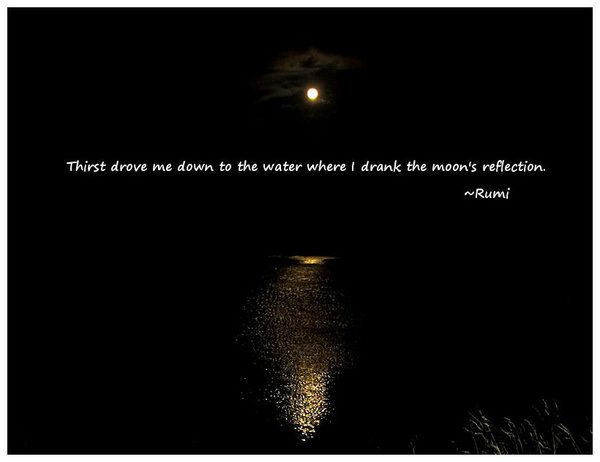 I Drank The Moons Reflection Rumi You Me Us Pinterest Rumi