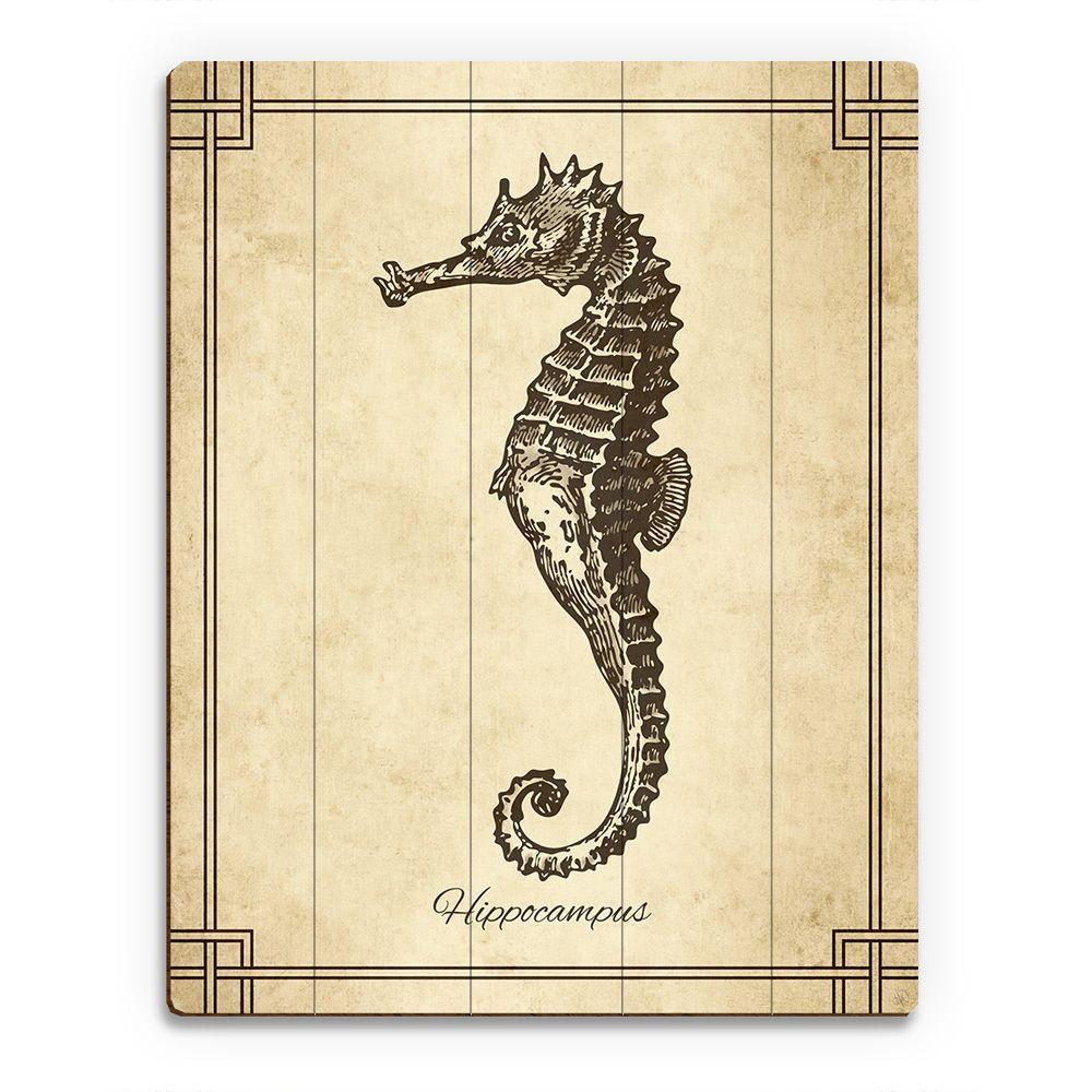 Horizon Vintage Seahorse Zoology Wood Wall Art | great ideas ...