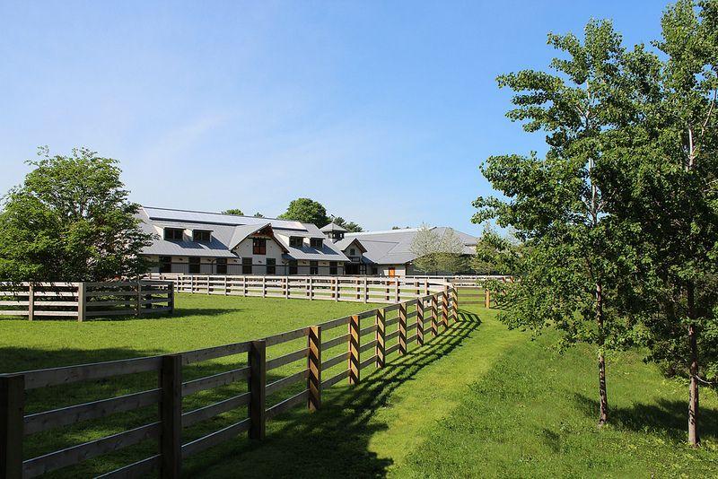 Weston horse farm