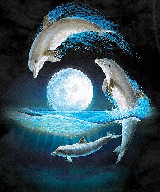 Delfines, Delfines Tatuajes Y Mar Animado