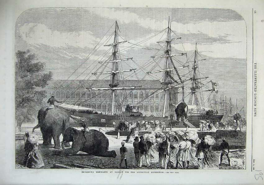 "Image result for 1868-BOMBAY-ELEPHANTS LOADED ON SHIP""COMPTA"" FOR WAR IN ABYSSINIA(ETHIOPIA)"