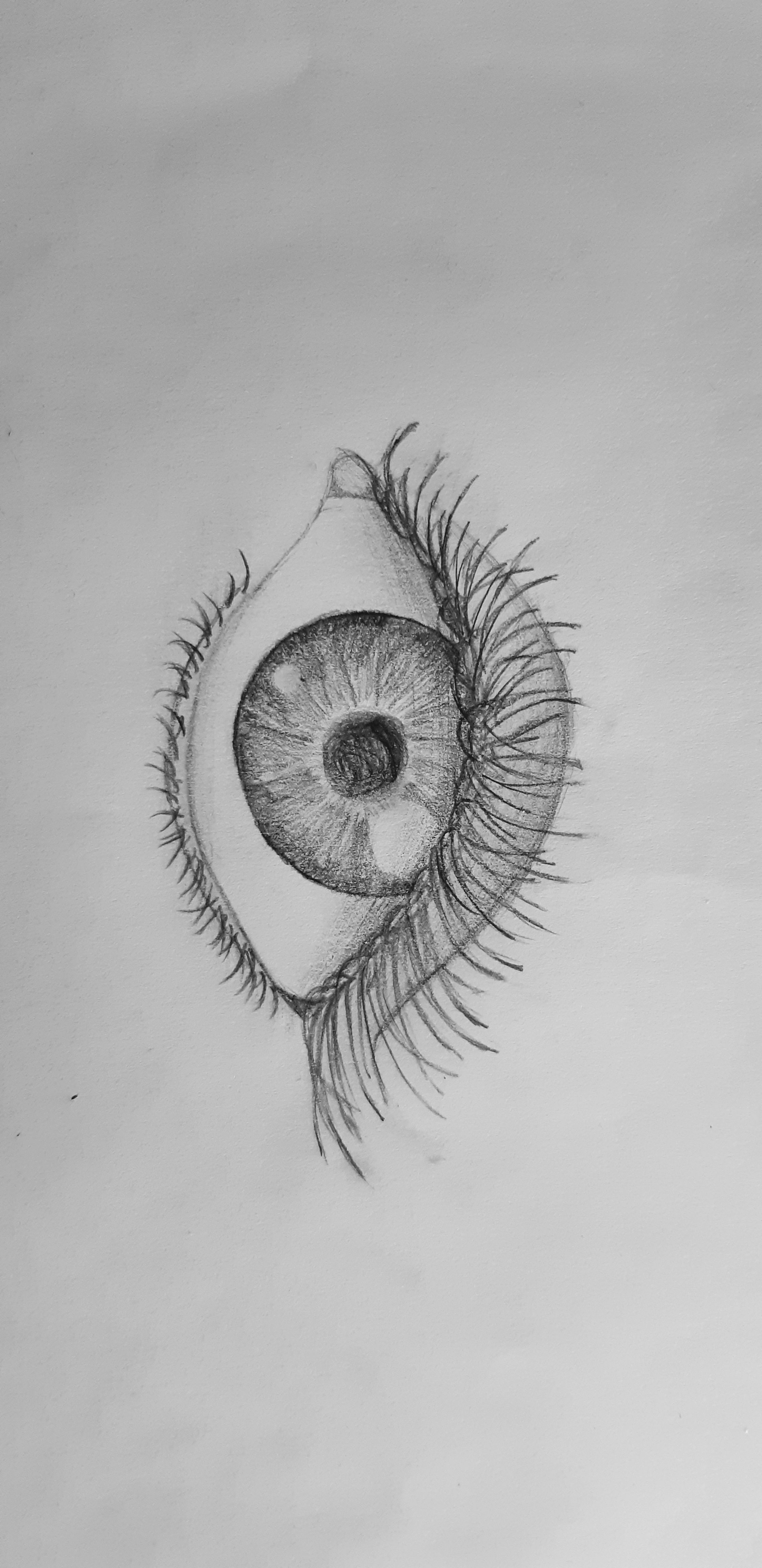 Dessin Au Crayon A Papier : dessin, crayon, papier, Dessin, Crayon, #dessin, #oeil, #crayon, #papier