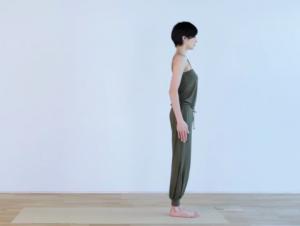 mae yoshikawa surya namaskar a 0  yoga for beginners