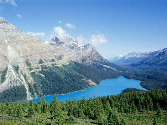 Canada, Alberta, Banff National Park, Peyto Lake xxx