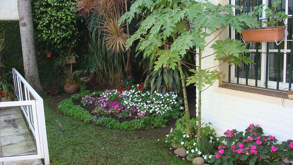 Como hacer un jardin sencillo y bonito 2 plantas - Ideas para decorar un jardin pequeno ...