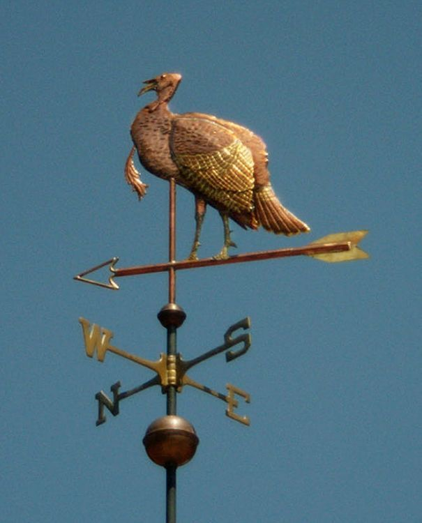 Wild turkey with gilded wings weathervane by West Coast Weathervanes